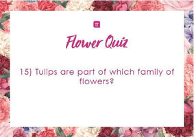 Printable - Flower Quiz