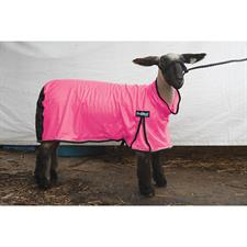 Weaver ProCool™ Sheep Blanket with Reflective Piping, Large