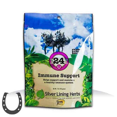 Silver Lining Herbs #24 Immune Support