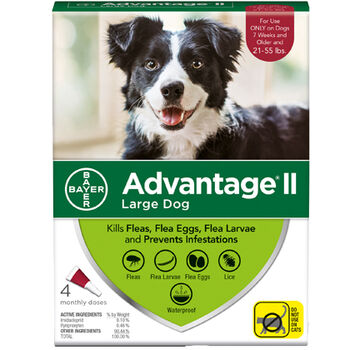 Advantage II L  Dog 4  Dose