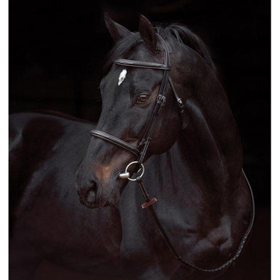 Amiog Deluxe Hunter Bridle