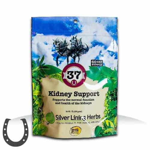 Silver Lining Herbs #37 Kidney Support - 1lb