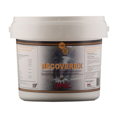 Basic Equine Recoverex 500g - Irvines Saddles