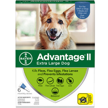 Advantage II X  Dog 6  Dose