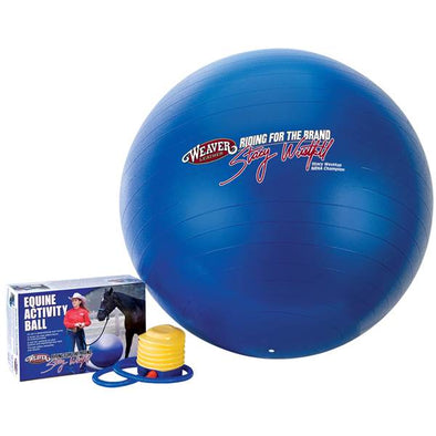 Weaver Stacy Westfall Activity Ball, Medium - Blue
