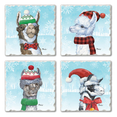 Coasters (Set of 4) -  SQ - FA LA Llama
