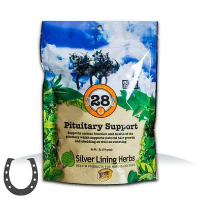 Silver Lining Herbs #28 Pituitary Support