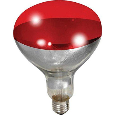 Heat Bulb Red 250wt