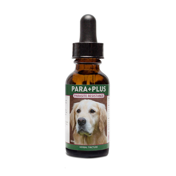Riva's Remedies Dog & Cat:Para+Plus Tincture (30ml)