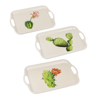 Succulent Nested Trays Large