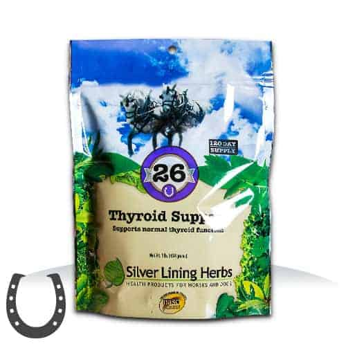 Silver Lining Herbs #26 Thyroid Support