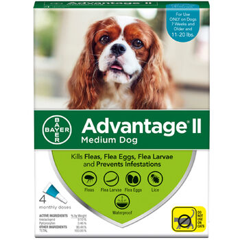 Advantage II M  Dog 4  Dose