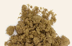 Kief: What It Is and How It's Consumed