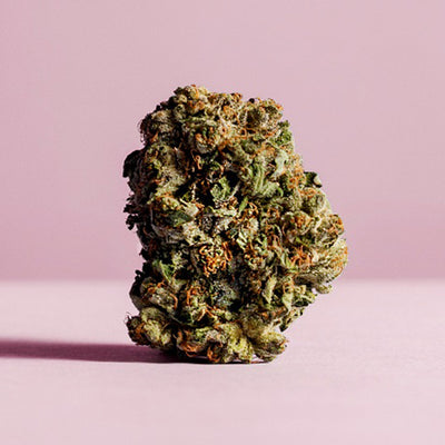 Image Featured Flower: Pink Kush