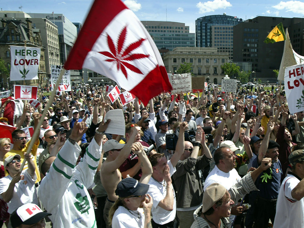 Image of a large crowd of Canadians rallying for cannabis consumer rights