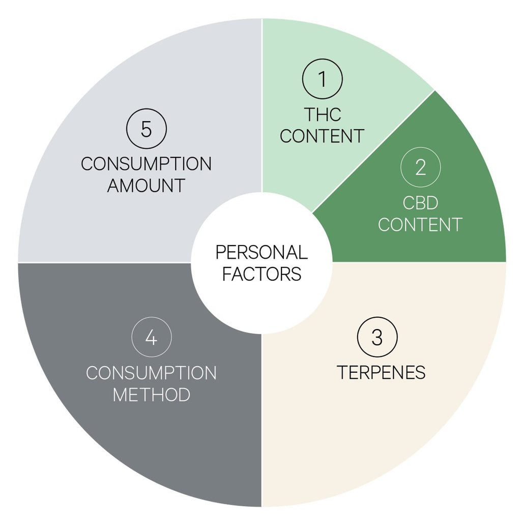 Factors In Choosing Cannabis Products