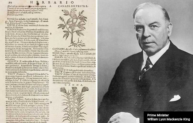 Image of Prime minister Mackenzie King and an old paper clipping about cannabis