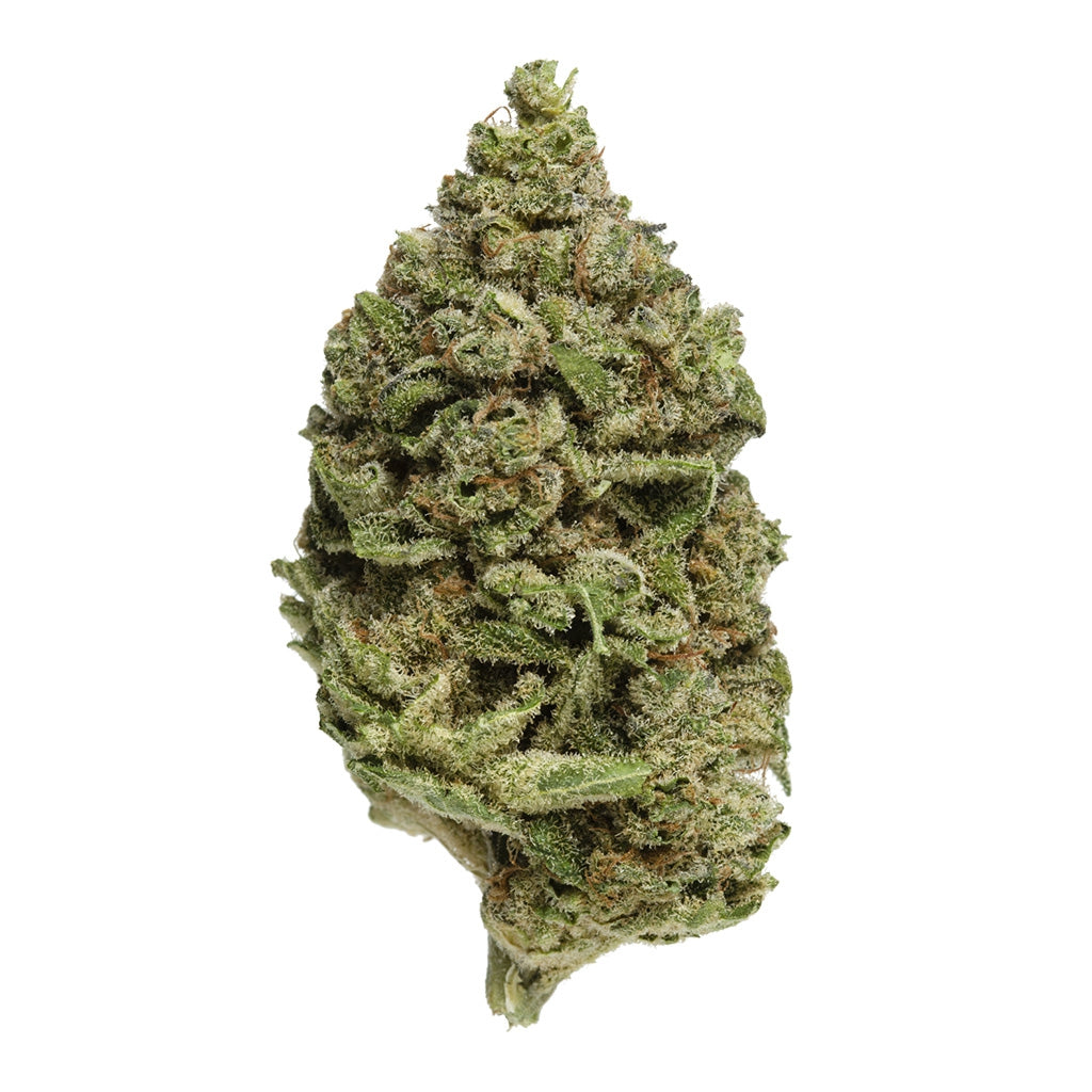 OS.Reserve Indica -