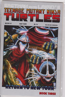 Teenage Mutant Ninja Turtles #21 NM