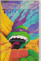 Teenage Mutant Ninja Turtles #22 NM 9.6 - The Dragon's Tail