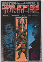 Teenage Mutant Ninja Turtles #23 NM 9.6 - The Dragon's Tail