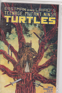 Teenage Mutant Ninja Turtles #42 NM 9.6 - The Dragon's Tail