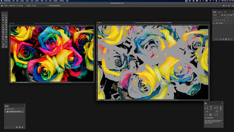 Vivid RGB roses on the left, with greyed-out roses on the right in Adobe Photoshop