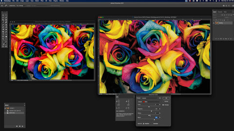 Two images of multi-colored roses, the image on the right is being corrected for red values
