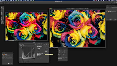 Two images of brightly colored roses with a pop-up window indicating the shadow curves at the bottom left