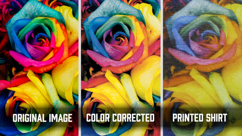 Vividly colored roses in RBG, CMYK, and on a shirt