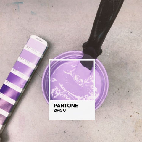 A pantone color match in a mixing bucket with the swatch next to it