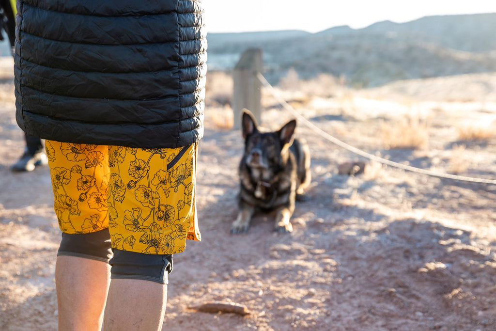 Woman standing in a puffy jacket and shorts with her dog