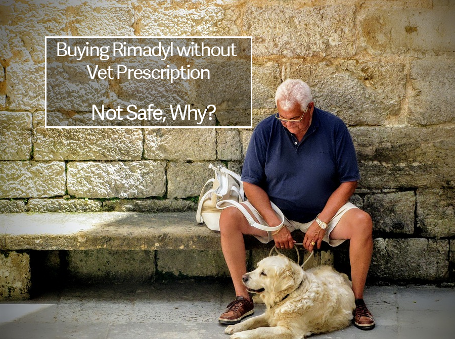 Rimadyl Alternatives without Vet Prescription