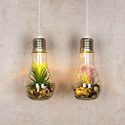 Light up Terrarium