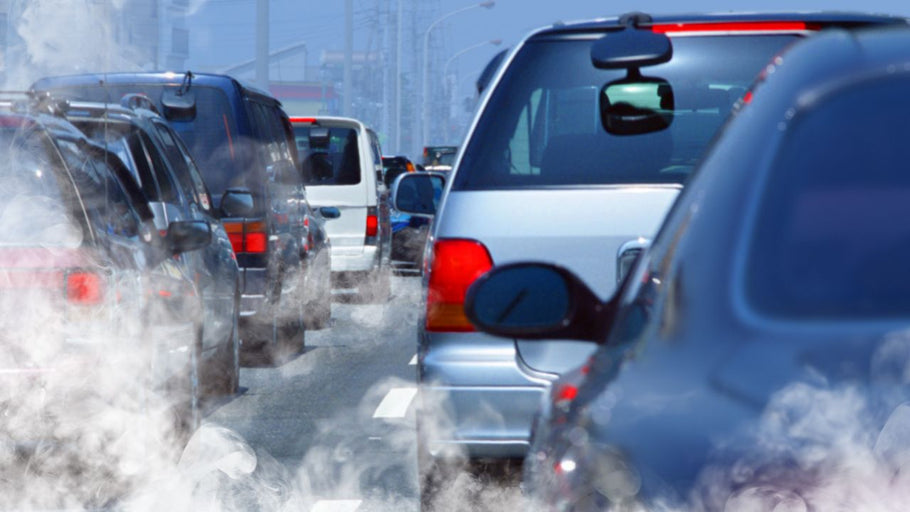 Air Pollution and your Children's Health