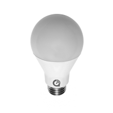 IQ Light Bulb