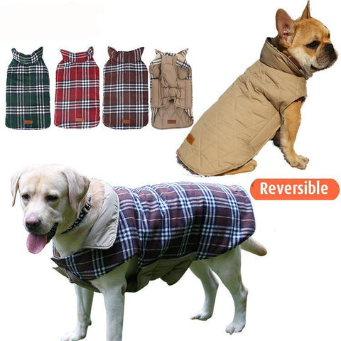 Keep Your Pets Warm during Fall & Winter with a Reversible Designer Dog Coat