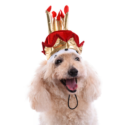 Royal Birthday Hat, Pet Royal Birthday Hat, Dog Royal Birthday Hat, Cat Royal Birthday Hat