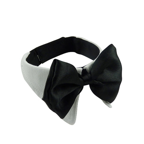 Adjustable Black Tie Collar for small pets