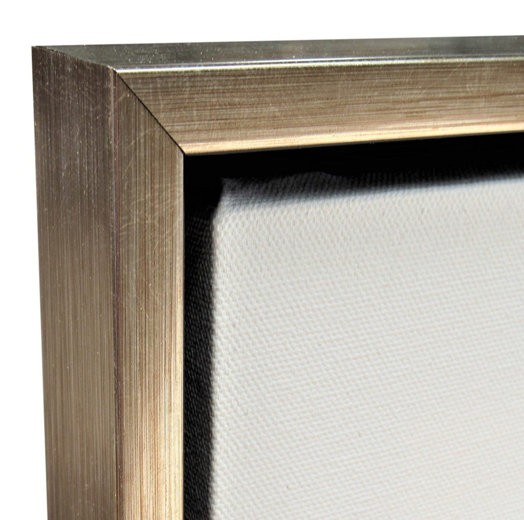 "Silver Floater Frame for 3/4"" Canvas"