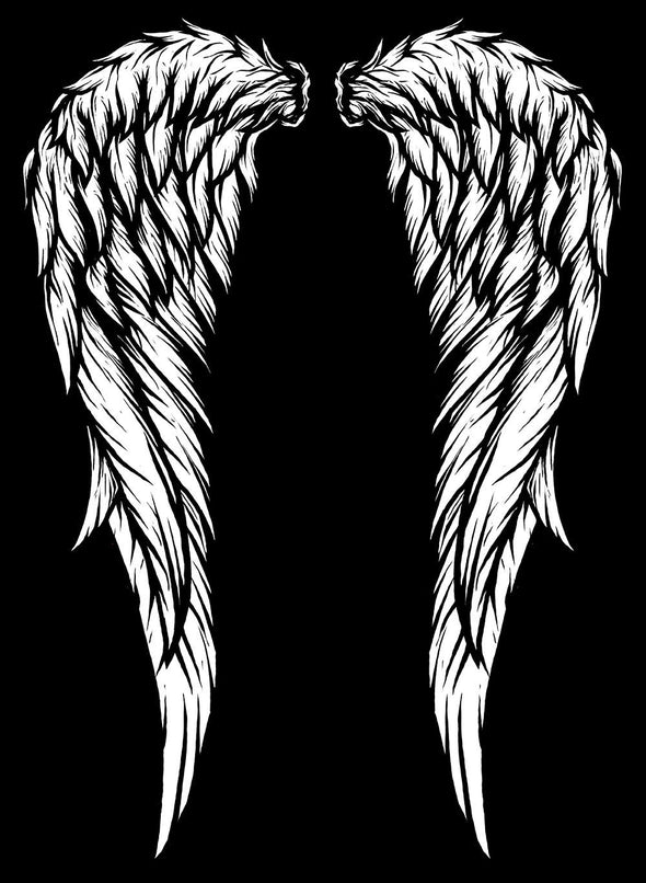 Dark Angel Wings Zipper Hoodie