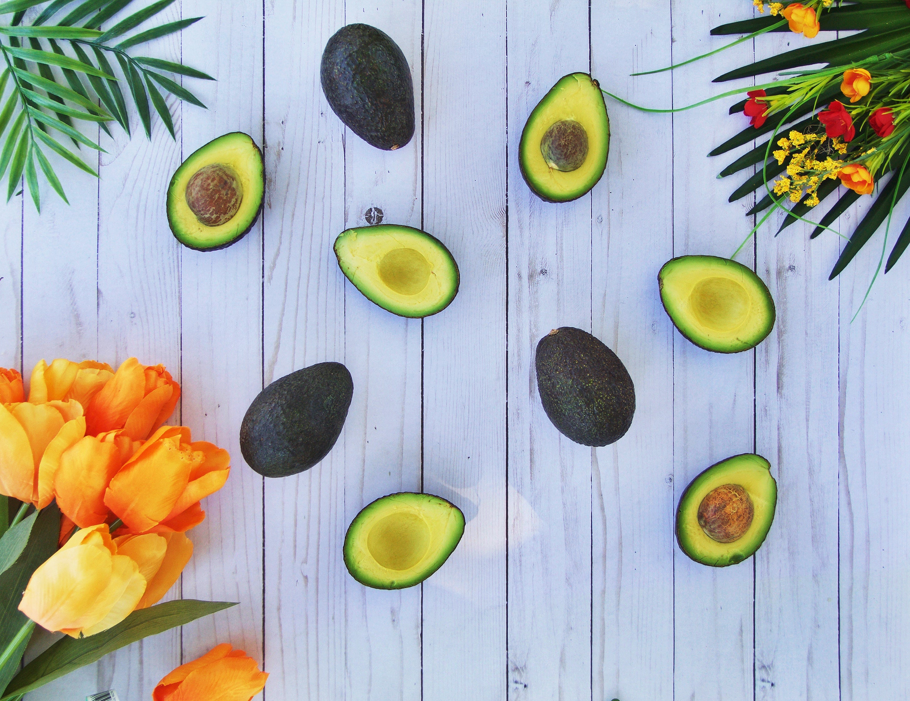 All the avo love! Happy National Avocado Day!