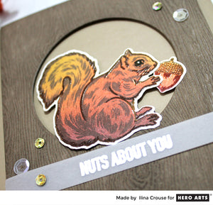 MISTI and Hero Arts Color Layering Squirrel - the perfect combination