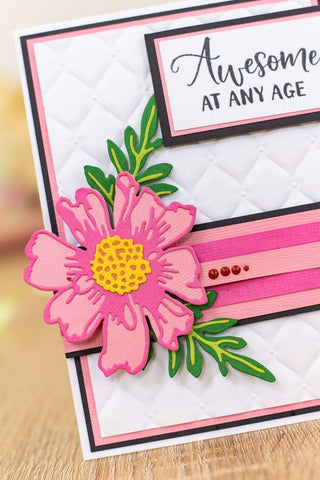 """Crafters Companion Gradient Matte Cardstock 6"""" x 3"""""""
