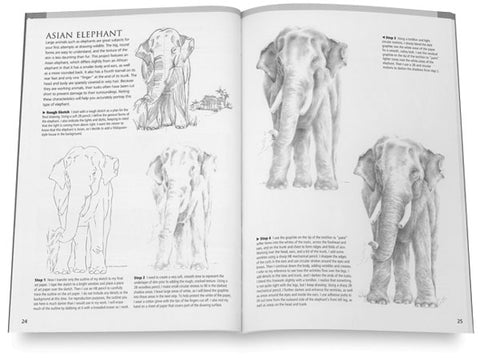 Lifelike Animals Drawing Made Easy