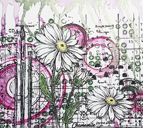 IndigoBlu - Camomile A5 Red Rubber Stamp by Kay Halliwell-Sutton
