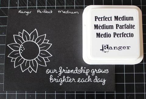Ranger - Perfect Medium Stamp Pad and Re-inker