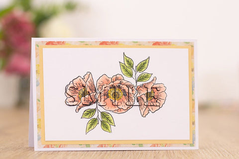 Crafter's Companion - Monthly Craft Kit #29 - Eclipse Stamp