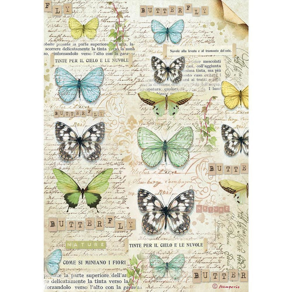 Stamperia - A4 Rice Paper Packed Butterfly