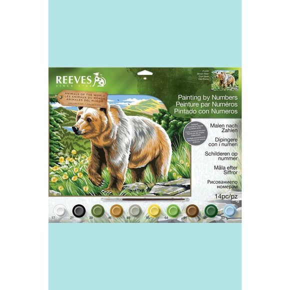 Reeves Painting By Numbers - Brown Bear - Large